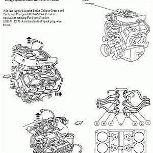 2000 Ford F150 4 6 L Firing Order