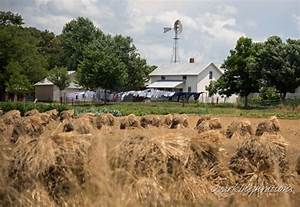 a visit to the amish of ethridge tennessee 29 photos With amish builders in tn