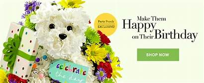 Flowers Birthday Gifts Delivery 1800flowers Gift Flower