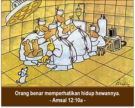 love  pet amsal proverbs  hep blog