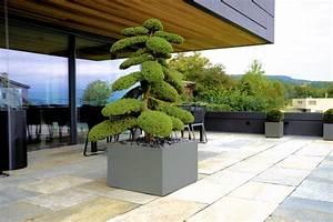 Unterschied Balkon Terrasse : sommerer co arlesheim pflanzen floristik lifestyle garten terrasse b ro geschenke ~ Markanthonyermac.com Haus und Dekorationen