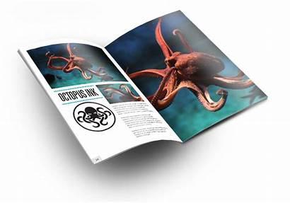 Brochure Octopus Ink Magazine