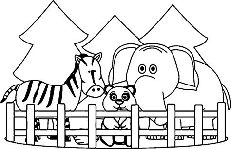 zoo coloring pages wecoloringpagecom