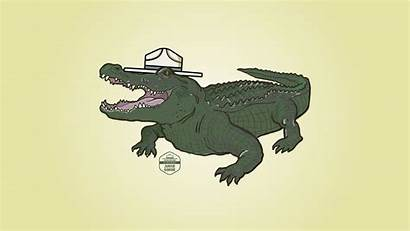 Cool Alligator Remember Ask Always Adult Before