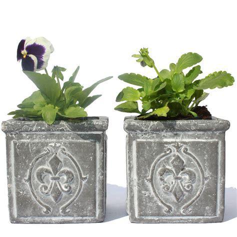 set of fleur de lis flower pots by jodie byrne