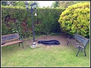 petit bassin d39ornement guide astuces With bassin d ornement jardin