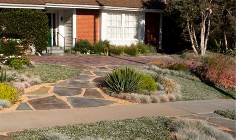xeriscape yard 50 fabulous xeriscape front yard design ideas and pictures