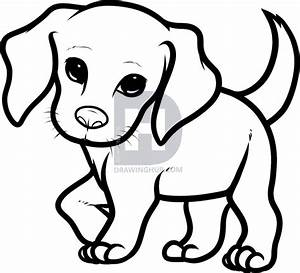 How to Draw a Beagle Puppy, Beagle Puppy, Step by Step ...