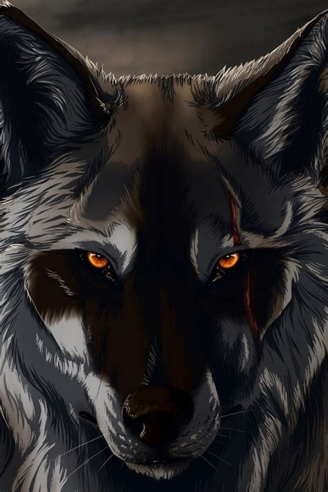 Iphone Black Wolf Wallpaper by Black Wolf 3d Wallpaper For Iphone 4