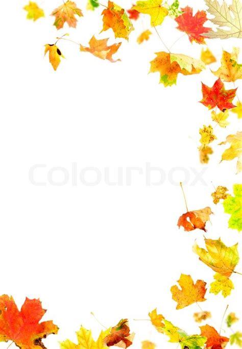 autumn leaves frame stock photo colourbox
