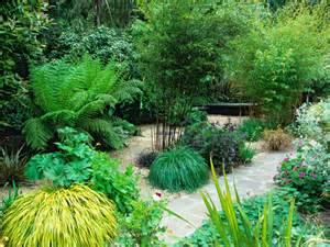 garden design with bamboo and ornamental grasses hgtv