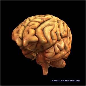 Unhealthy Human Brain