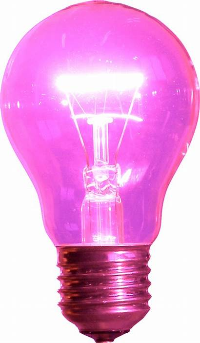 Pink Bulb Bulbs Playground Writing Taxi Ride