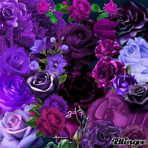 purple roses Picture #123355935 | Blingee.com