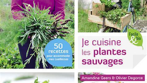 cuisiner les plantes sauvages plantes cuisine conseils design de maison
