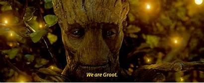 Groot Guardians Galaxy Tree Raccoon Rocket Friend