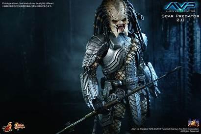 Predator Scar Toys Alien Action Scale Inch