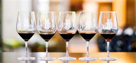 light red wine for beginners red wine types and more the basics of red wines
