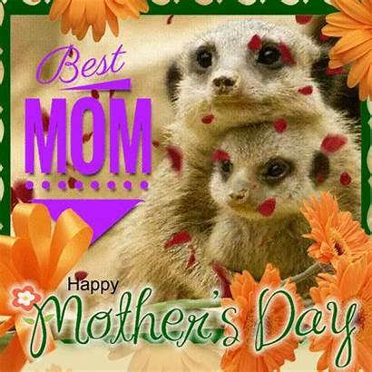 Mom Ecard Happy Mother Mothers Ecards Send