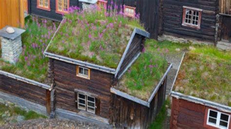 savoir cuisiner installer un toit vert une bonne idée