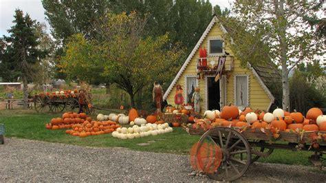 Ver Halloween 2 2009 Online Castellano by 100 Ardenwood Pumpkin Patch Hours The Bay Area