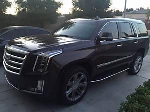 2016 Cadillac Escalade - Overview - CarGurus