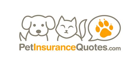 pet insurance quotes pet insurance quotes superbcrew