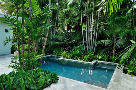pool garden plants 282 best images about mid century modern landscapes on pinterest eero saarinen modern houses