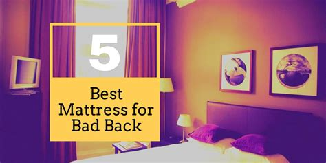 Best Mattress Topper For Bad Back by The 5 Best Mattress For Bad Back 2019 Reviews Top