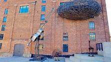 American Visionary Art Museum in Baltimore, Maryland   Expedia