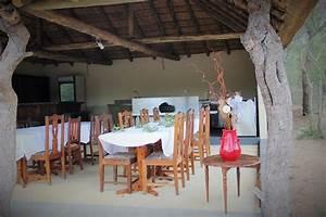 4 bis 6 tage kruger park luxus zelt camp safari With katzennetz balkon mit elizabeth garden kosmetik