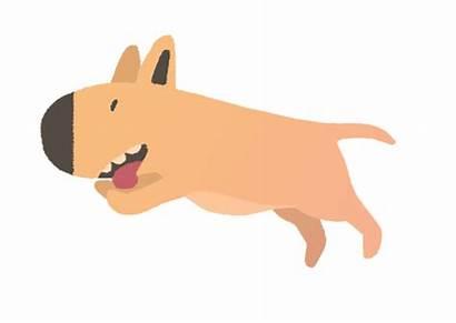 Dog Animation Animated 2d