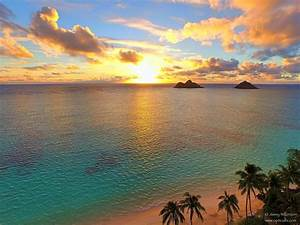 Lanikai! Beautiful and Charming Cottage in - VRBO