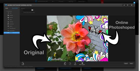5 Awesome Free Online Image Editors Trickvilla