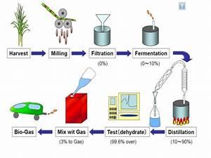 Ethanol Production Business Plan