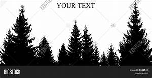 Pine Tree Line Silhouette Pictures to Pin on Pinterest ...