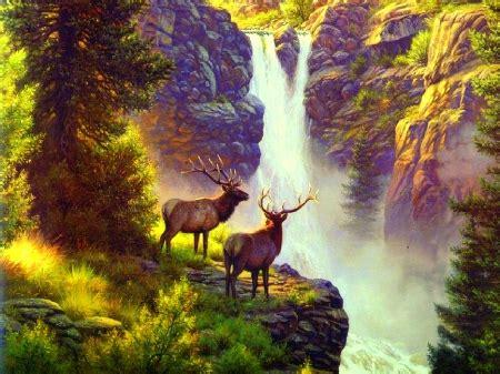 elk  waterfall waterfalls nature background