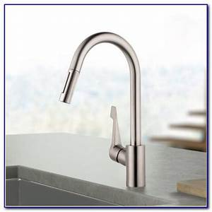 costco kitchen faucetscostco water ridge kitchen faucet With costco kitchen faucets