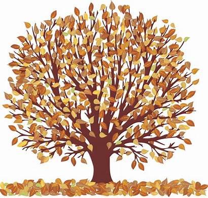 Clipart Clip Fall November Tree Leaves Trees
