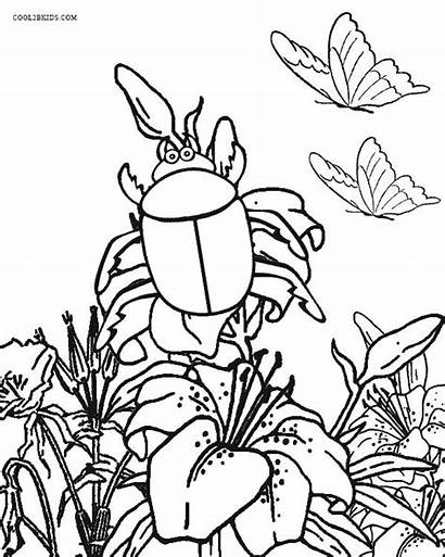 Coloring Bug Insect Pages Printable Bugs Garden
