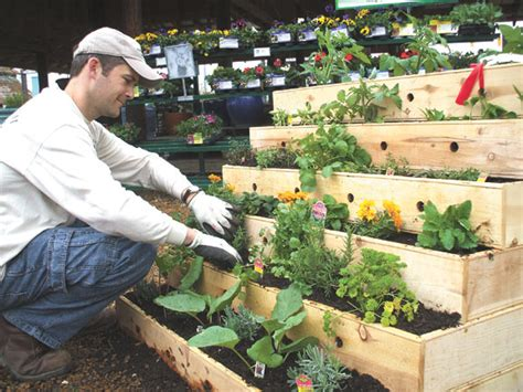 Create An Easy Micro Organic