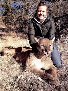 Cougar or Mountain Lion   Big Game Hunting Records ...