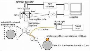 Schematic Diagram Of The Experimental Setup  One Source Fiber And An