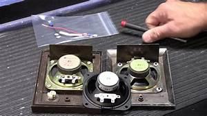 How To Replace A Nutone Intercom Entry Door Speaker Cone