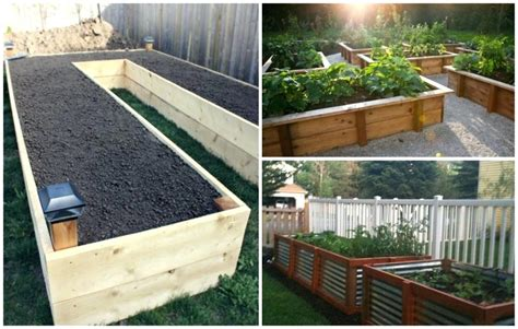 4 ways to get cheap price with best quality office raised garden bed soil layers cheapest way to build raised