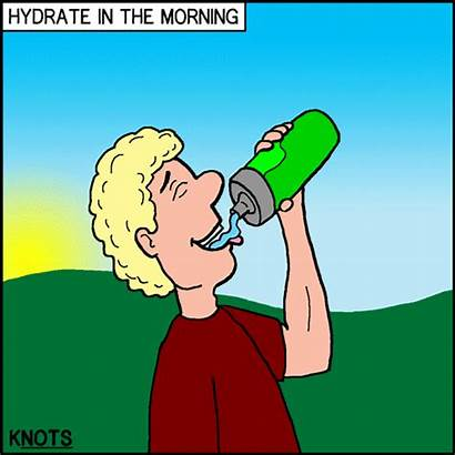 Cartoon Dehydration Knots Hydrate Jambo Jamboree July