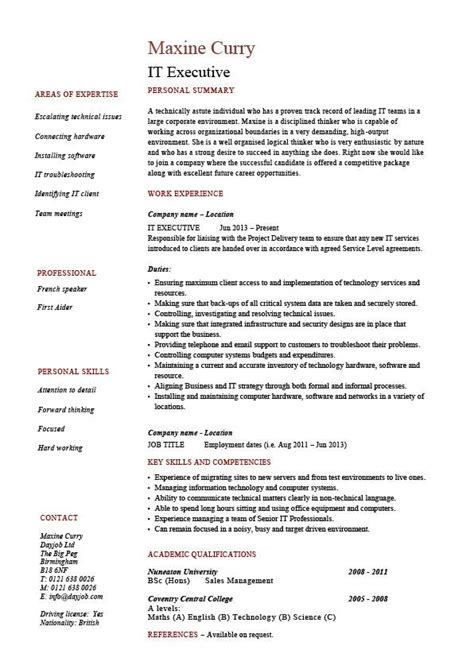 Areas Of Expertise On A Resume by It Executive Resume Exle Sle Technology Technical Skills Expertise College