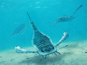 Prehistoric Pests: Bugs in the Age of Dinosaurs - U.S ...