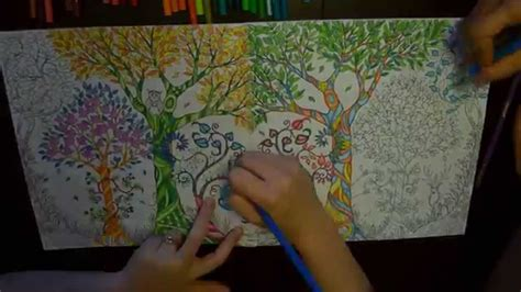 enchanted forest  colouring book time lapse youtube