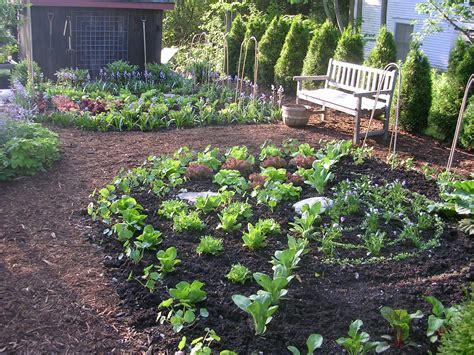 kitchen garden design expert design consultation ecker ogden 3643
